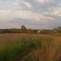 Тропинка бежит к дому. :: Святец Вячеслав