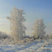 На заснеженной окраине села. :: nadyasilyuk Вознюк