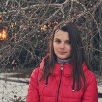 Зимние дни :: Виктория Олейник
