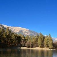 Заледеневшее озеро :: Marina Timoveewa