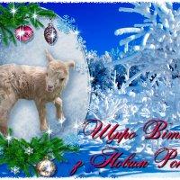 С наступающим Новым Годом! :: Екатерина Шалдуга