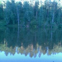 Прекрасный лесной пруд 2 :: Владимир Ростовский