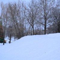 Снежный бархан. :: zoja