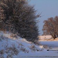 Тут подо льдом река чуть дремлет... :: Юрий Морозов