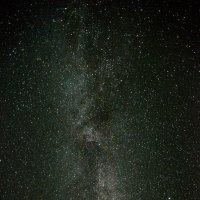 Южные Ночи :: Дмитрий Тарнавский