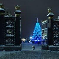 Добро пожаловать в Новый Год! :: sergej-smv