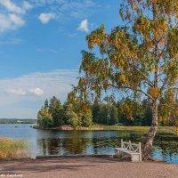 Осень в парке :: Надежда Лаптева