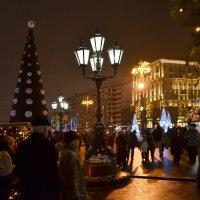 В канун Нового года. :: Oleg4618 Шутченко