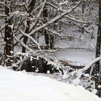 Зимняя река-белые берега :: Михаил Лобов (drakonmick)