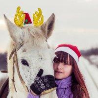 Конная прогулка под Новый год :: Виктор Глушков