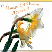 C НОВЫМ ГОДОМ!!!! :: Petr Popov