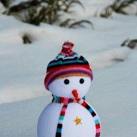 Снеговичок :: leoligra