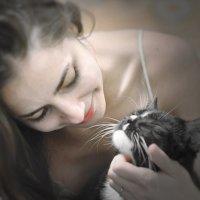Повезло коту :: Семен Кактус