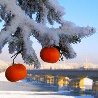 Дарю новогоднее настроение ! :: Нина северянка