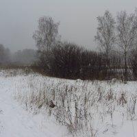 IMG_8874 - Последний день уходящего года :: Андрей Лукьянов