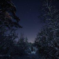 Звёздная ночь :: Наталья Ерёменко