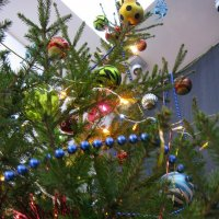 С Новым 2015 Годом! :: Sergey Serebrykov