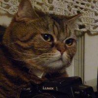 - Я думаю, что каждый рад  иметь свой фотоаппарат. :-) :: Galina Leskova