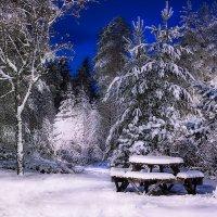 Волшебница-зима :: Любовь Гайшина