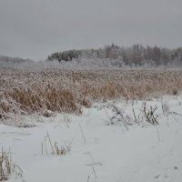 Зимний пейзаж/ :: Виктор Евстратов
