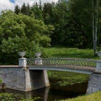 Мостик в Павловском саду :: Антон Банков