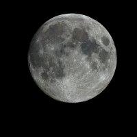 Луна над Питером :: Дмитрий Редьков