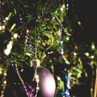Новогоднее настроение :: Svetlana Nefedova