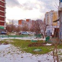 Вчера, вроде, зима была... :: Светлана Лысенко