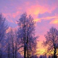 Утренний рассвет.Продолжение. :: Андрей Куприянов