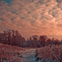 Морозный закат :: Игорь Вишняков