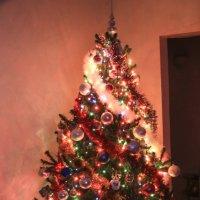 Новогодняя :: Надежда Середа