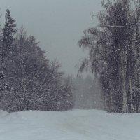 снежно.. :: Ирина Кулагина