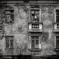Балясины очень украшают наши дома.) :: Николай