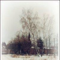 Зима 2015. :: Виталий Виницкий