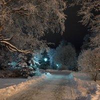 Зимняя сказка 5 :: Константин Жирнов