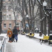 В зимнем парке аллеи пусты... :: Галина
