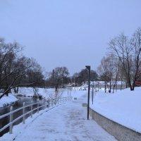 По зимним дорожкам. :: zoja