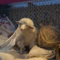 Вот и Новый год пришел :: marmorozov Морозова