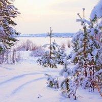 вечер на зимнем озере :: Сергей Швечков
