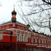 Богородице - Рождественский женский монастырь :: Лариса Корженевская