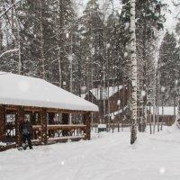 всё в снегу :: Сергей Говорков