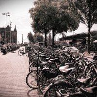 Амстердам :: Максим Тураев