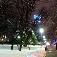 Прогулка в зимний вечер... :: Тамара (st.tamara)