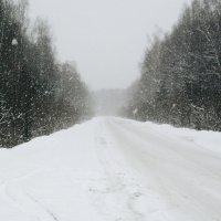 Снежная дорога ✨ :: Леля Курепина