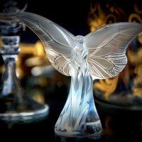 Белый ангел :: Alexander
