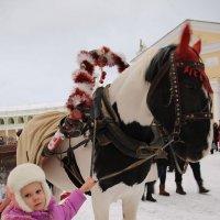 Коня на скаку остановит!!!!!!!! :: Tatiana Markova