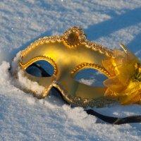 зимняя маска :: Светлана Павловская