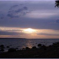 Сиреневый закат :: Вера