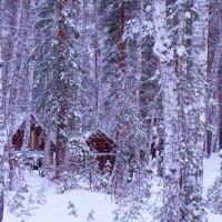 У леса на опушке жила зима в избушке.... :: Светлана Игнатьева