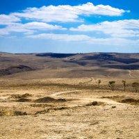 Иудейская пустыня :: Тарас Леонидов